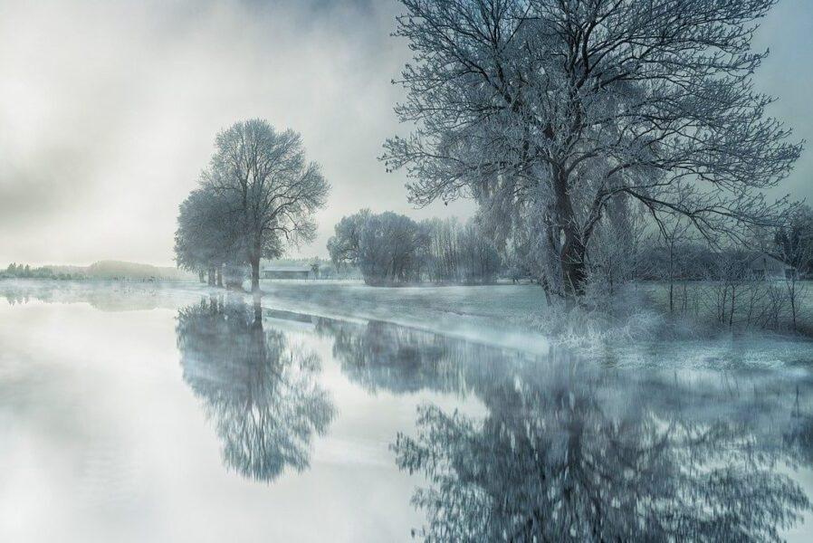 """Elaine Kahn – """"Any Cold Time"""""""