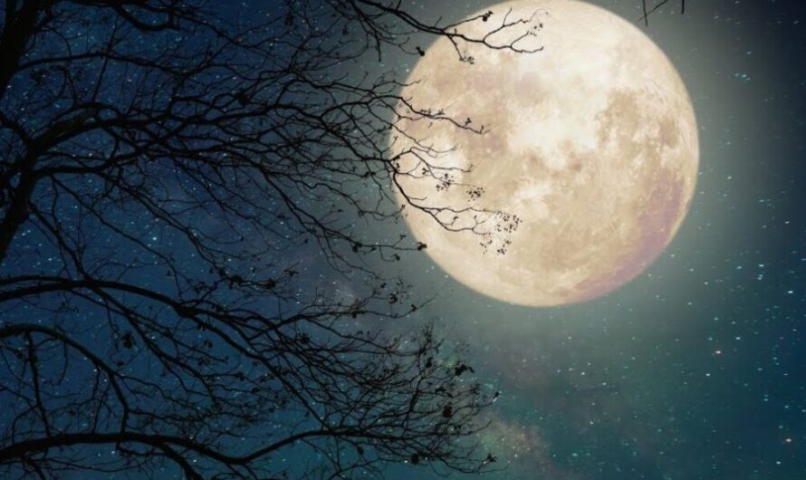 10 Famous English & American Poems About the Moon